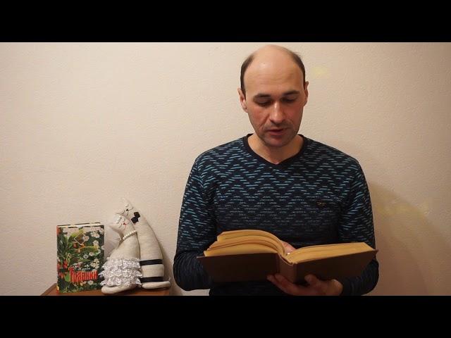 Изображение предпросмотра прочтения – ДмитрийПономарев читает произведение «Сорочинская ярмарка» Н.В.Гоголя