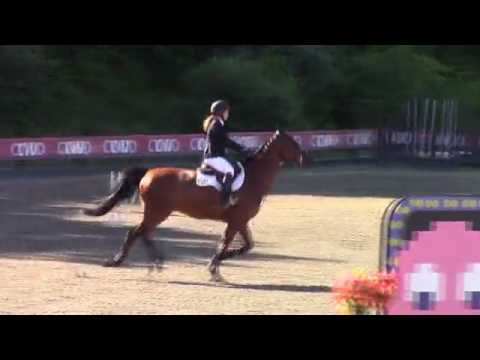 Video of Togo Rouge ridden by Spencer Walsh from ShowNet!