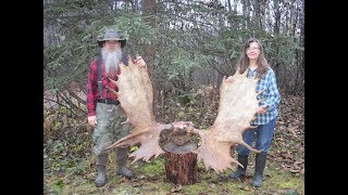 Wife And I Harvest An Alaskan Trophy Moose