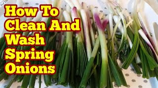 Spring Onions: How To Clean And Wash Them Hygienically