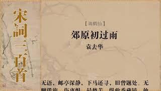 瑞鹤仙 袁去华 郊原初过雨