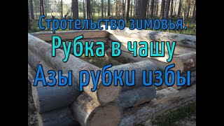 Строительство зимовья азы рубки из круглого леса в чашу 1