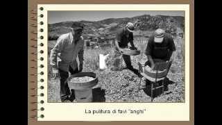Antichi mestieri e vecchie usanze siciliane