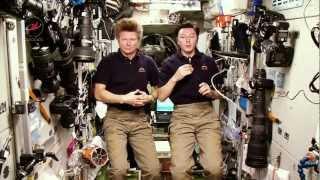 Урок из космоса  Наш дом   Земля