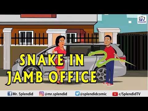 SNAKE IN JAMB OFFICE