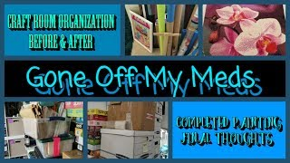Organized Hoarder Tour ~ Completed Painting Review ~ Controlled Ranting ~ DiamondTube #161