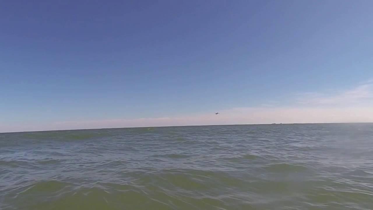 Osprey Sea Hawk Fish Eagle Flies Very Low Overhead After Diving Into Myrtle Beach Ocean