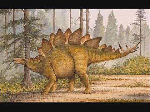 Dinosaurios: Stegosaurus (Reptil con tejado)
