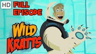 Wild Kratts - Polar Bears Don