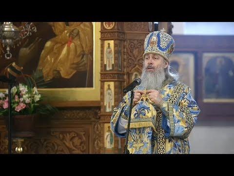 О коронавирусе, о пагубности уныния, о заступничестве Божией Матери: в проповеди митр. Арсения