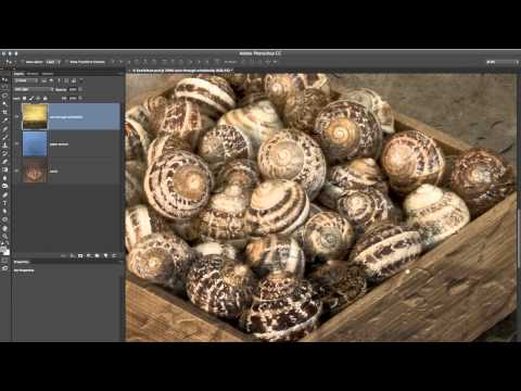 Photoshop Playbook: Adding Texture to Photographs