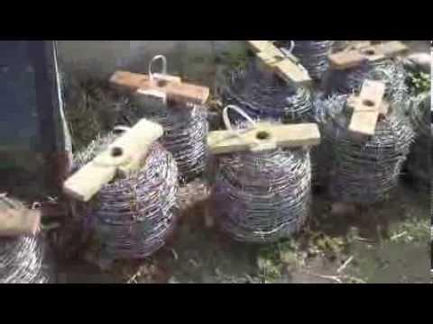 Building Weekend - Fences, Water Harvesting, Chicken,
