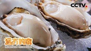 《远方的家》 20190913 系列节目《大好河山》——多彩丝路 家乡味道| CCTV中文国际