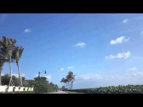 Palm Beach, Realtor Valentina Aved www.villavalentina.realtor