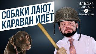 СОБАКИ ЛАЮТ, КАРАВАН ИДЁТ / ИЛЬДАР ЗИНУРОВ
