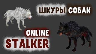 STALKER ОНЛАЙН / Шкуры собак