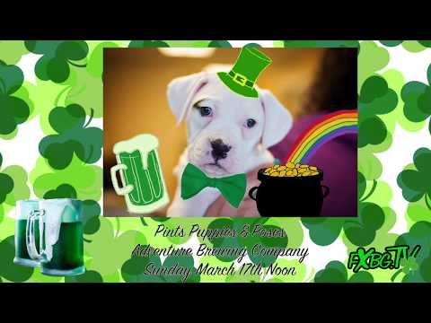 FXBG Entertainment Report - St Patrick's Day Weekend