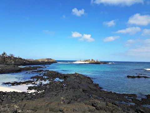 Galapagos Islands Adventure   Gopro Hero 4   FeiyuTech G4 S