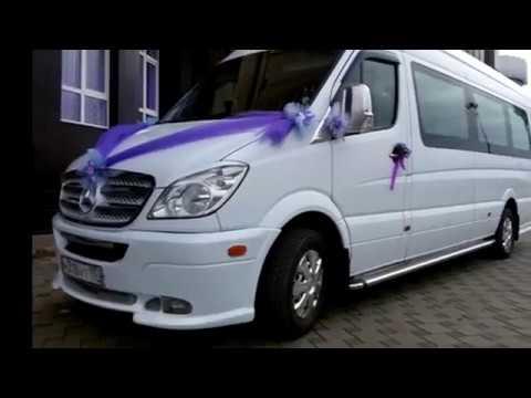 Без опыта на автобус устраиваюсь  Mercedes-Benz Sprinter