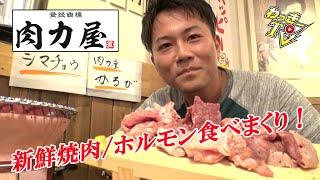 【肉力屋】新鮮焼肉が美味い!低温調理でホルモン刺しも味わえる!