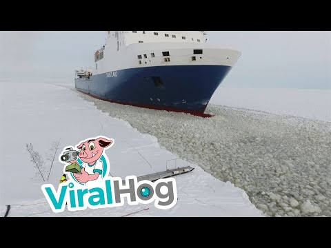 Pilot Steps onto Moving Ship || ViralHog