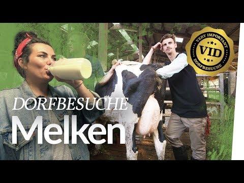 V.I.D #2 Melken mit Franzi &Fynn besamt 'ne Kuh | Kliemannsland