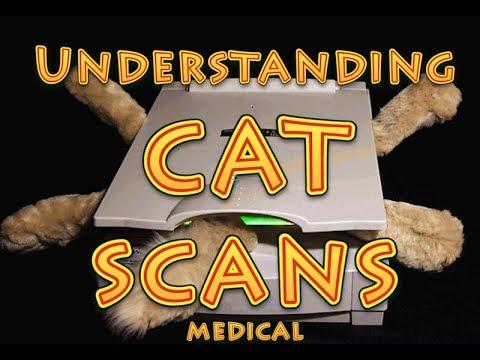 Understanding CT Scans