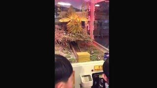竹山紫南宮金雞母,生金蛋