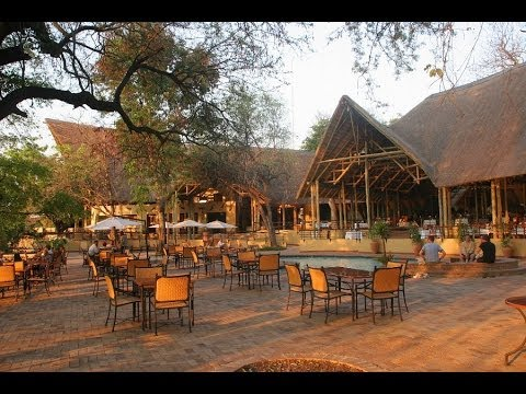 Hotel Report: Chobe Safari Lodge