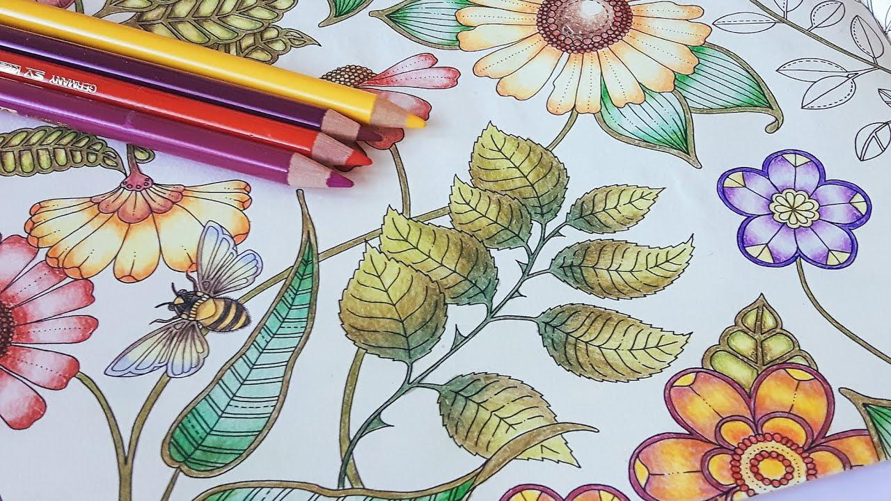 Coloring Tutorial Secret Garden Pt 4