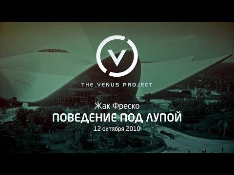 видео: Поведение под лупой - Жак Фреско - Проект Венера