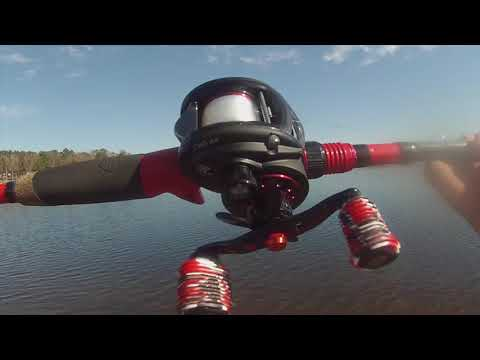 Fishing Lake Hawkins Caught A New Species