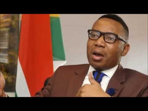 Deputy Minister Mduduzi Manana admits to slapping a woman