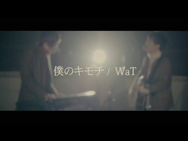 僕のキモチ / WaT(cover) 天月×少年T