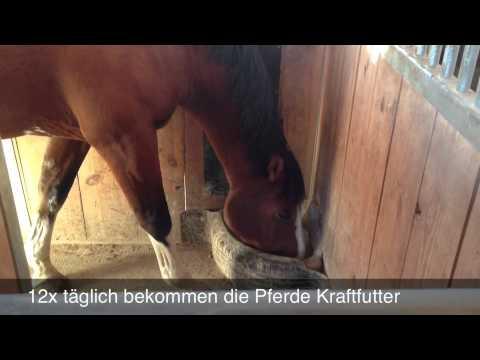Gut Kastensee -