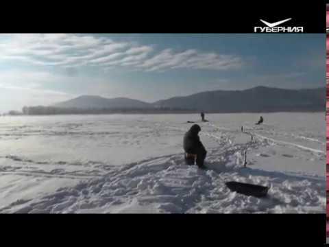 Камское устье ловля судака зимой видео 2017 - Про рыбалку