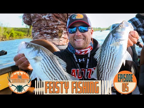 EPIC STRIPED BASS FISHING IN NORTHERN CALIFORNIA (We Got Limits!)