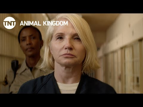 Animal Kingdom: Season 3 - Coming Soon [PROMO]   TNT