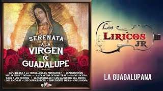 Los Liricos Jr. - La guadalupana (Video Lyric)
