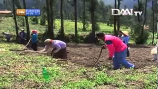 Kearifan budaya Suku Tengger Bromo