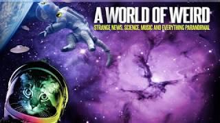 ★★ A World Of Weird - Channel News  ★★
