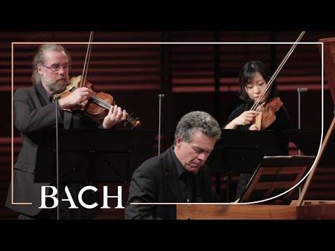 Bach - Harpsichord concerto in F minor BWV 1056 - Henstra | Netherlands Bach Society