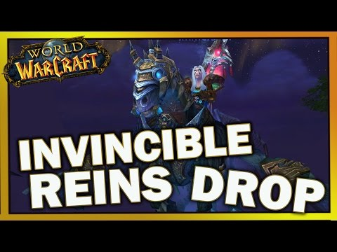 World of Warcraft Invisible Reins Mount Drop !
