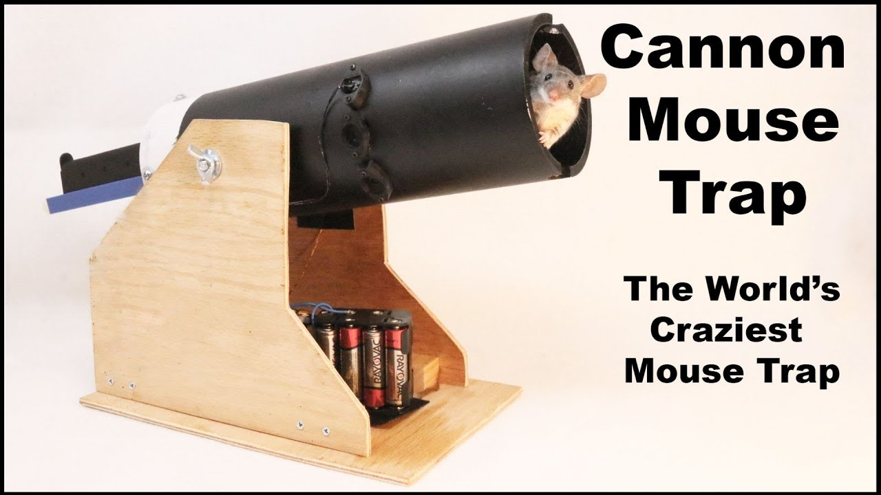 Cannon Mouse Trap The World S Craziest Mouse Trap Mousetrap Monday Youtube
