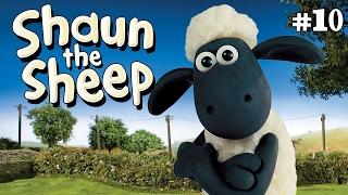 Shaun the Sheep -  Camping Chaos S1E9 (DVDRip XvID)