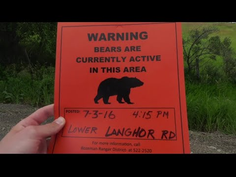 """Be Bear Aware"": Keep food safely stored in Montana's backcountry"