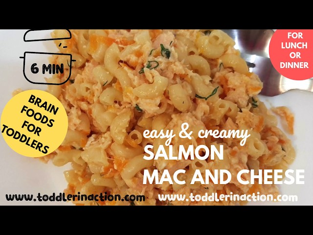 Toddler Meal Ideas for lunch or dinner,  Salmon Mac and cheese