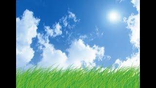 青空文庫の中から 与謝野晶子の詩をご紹介させていただきます。風が吹け...