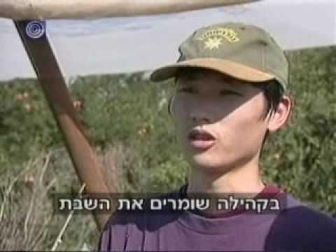 Chanal1 2009-11-28 Jews from China - kr8 - עליית יהודים מסין לארץ