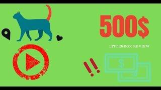 Cat Reacts to $500 Litter Box  Litter Robot III Review
